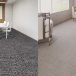 Siena Carpet - 52nd Street and Latté
